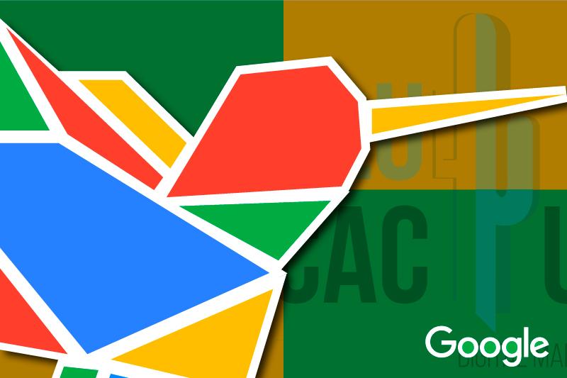 BluCactus Los Algoritmos de Google Hummingbird