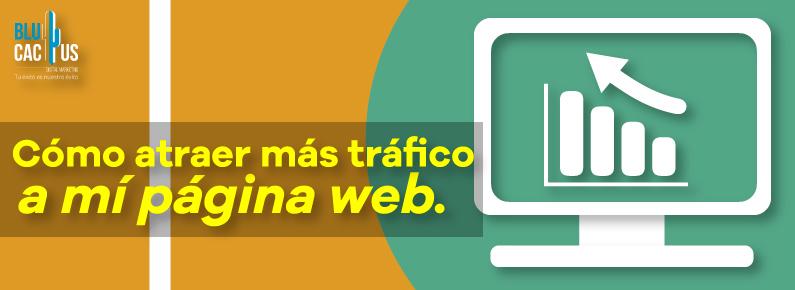 BluCactus - Como atraer mas trafico a tu sitio web