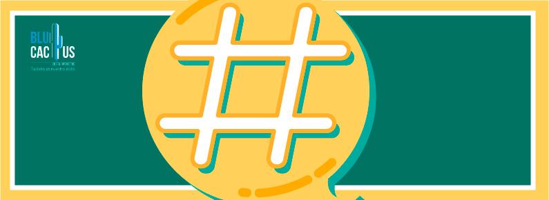 BluCactus - Como atraer mas trafico a tu sitio web Hashtags