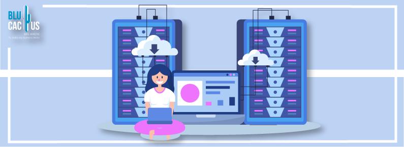 BluCactus El hosting perfecto para tu sitio web