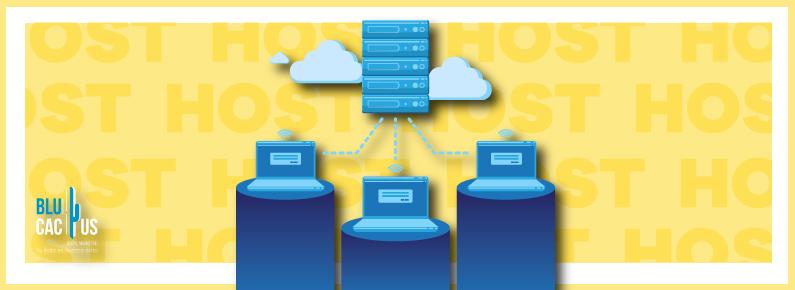 BluCactus Que es el hospedaje web y que tecnologia utiliza