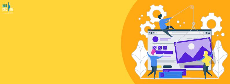 BluCactus - Creadores de sitios web