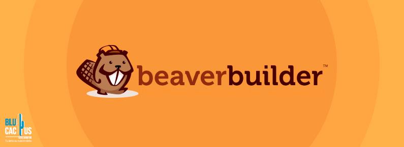 Blu Cactus Beaver Builder plugin de wordpress para landing page