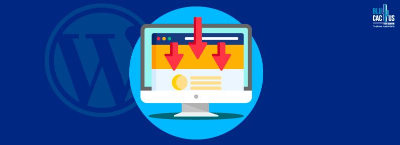 BluCactus WordPress Landing Page