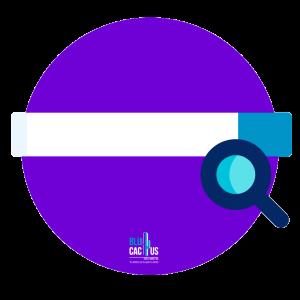 Blucactus Configuración de las cajas de búsqueda