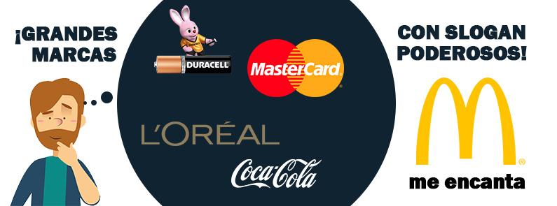 BluCactus - Grandes marcas