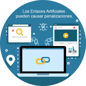 blucactus enlaces artificiales de google