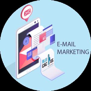 blucactus Cómo solucionar problemas en las campañas de email marketing para empresas